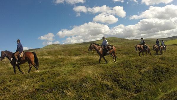 Great Britain, Dartmoor
