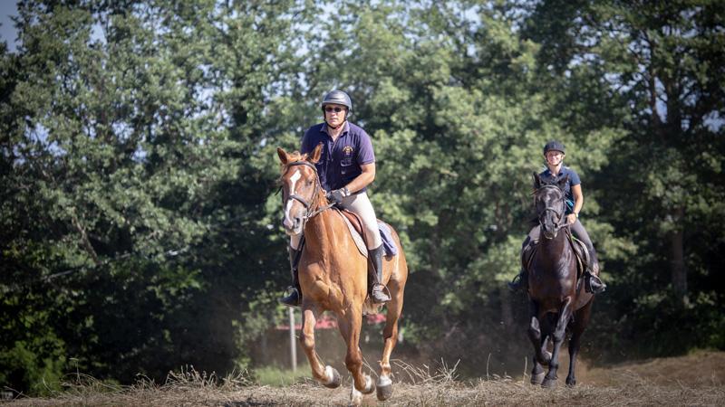 Umbria Chest Riding Saddle Portuguese
