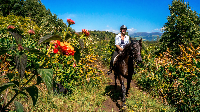 Azores, Sao Miguel - Riding in a Tropical Landscape