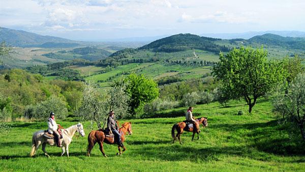 Riding holiday   Western Ridning   Italy   Horse riding holiday ...