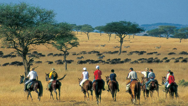 Kenya - Riding Safari Seven Nights