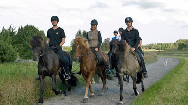 Sweden, Roslagen - Summer Ride